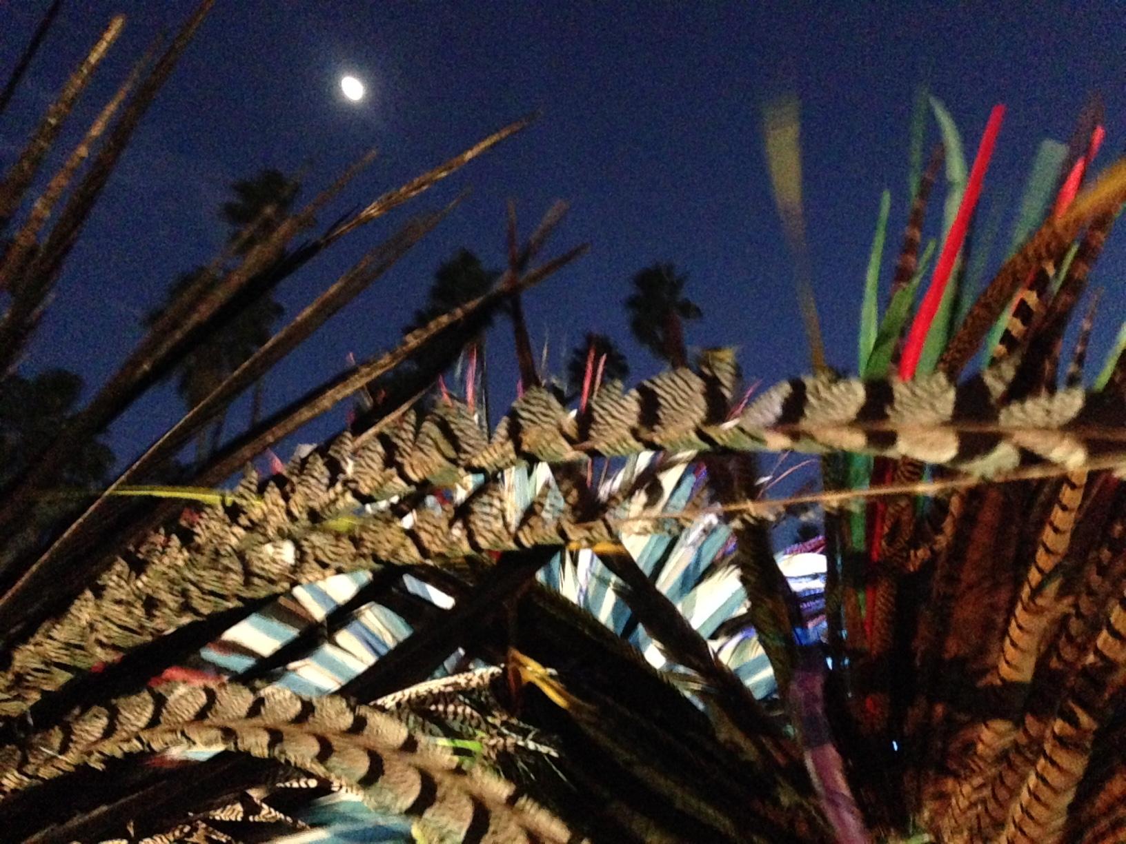 Aztec feathers and moonlight at Dia de Los Muertos
